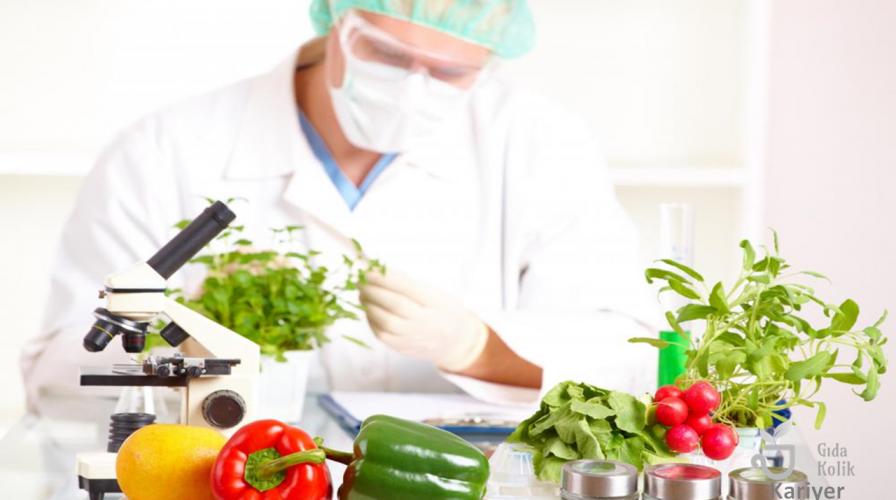 Gıda Mühendisliği Nedir?