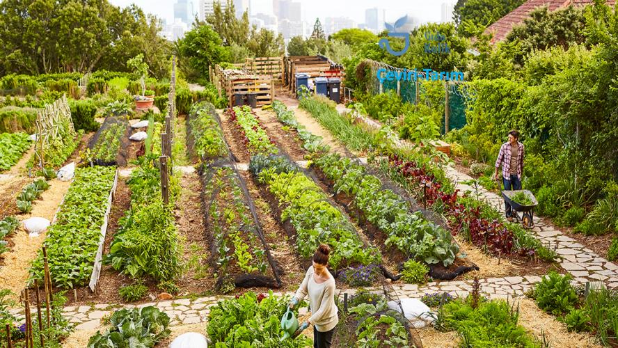 Sürdürülebilir tarım hakkında bilmeniz gereken 9 şey