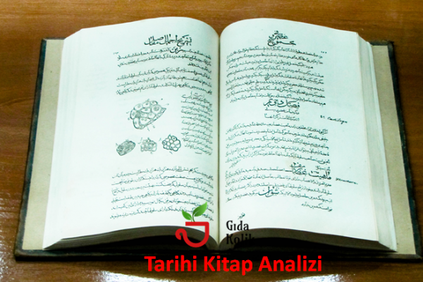 El Kanun Fi't Tib: İbni Sina