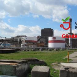 Şeker Fabrikalarının Özelleştirilmesine Alternatifler ve Öneriler