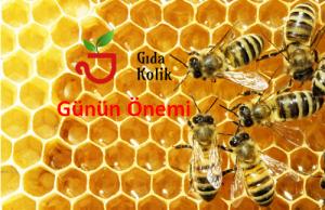 20 Mayıs Dünya Arılar Günü