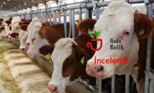 Tarım ve Hayvancılıkla ilgili Ekonomik Gelişmeleri Takip Etmek için Öneriler